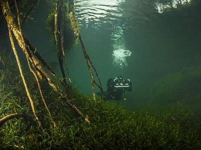 Forschnungstaucherin der AMLA im gefluteten Tunneleinschnitt (Foto C. Howe)