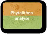 Phytolithen