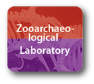 Zooarchaeological Laboratory