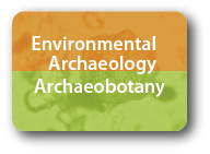 Environmental Archaeology