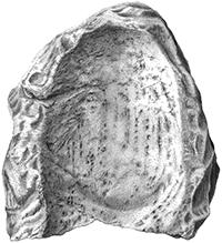 Zeichnung Mahlstein