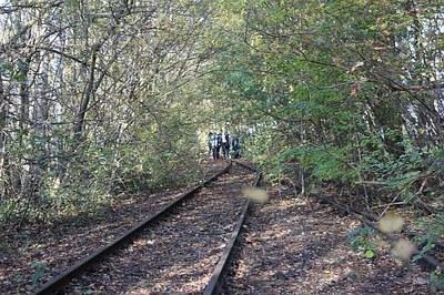 Studierende bei der Prospektion der Gleisanlagen (Foto F. Jürgens)