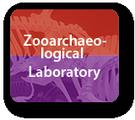 Zooarchaeological Laboratory
