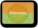 Palynologie